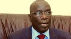 """Ibrahima Ndiaye, APR: """"Diène Farba Sarr a fait taire toutes les querelles..."""""""
