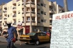 Baisse du loyer : Locataires et  bailleurs se bousculent sur le 800 000 77 77