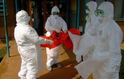 Afrique de l'Ouest : L'épidémie d'Ebola devrait durer 2 à 4 mois, selon l'OMS