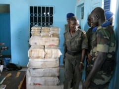 """Bignona : une """"importante quantité"""" de chanvre indien saisie à Néma"""
