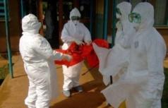 Du nouveau dans la progression du virus Ebola