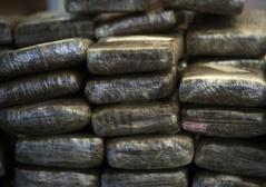 Un commerçant arrêté avec plus d'une tonne de drogue  à Pout