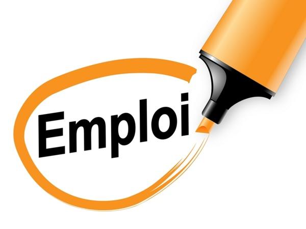 Leral/Job : Un monteur expérimenté cherche emploi