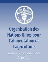 Audio - Insécurité alimentaire : La Fao vole au secours de 14 familles à Sédhiou et Goudomp