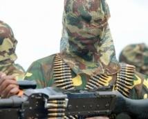 Trente-cinq morts dans une triple attaque de Boko Haram