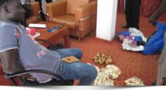 Exclusif ! Commerce illégal et application de la Loi faunique :  Deux trafiquants d'ivoire arrêtés et condamnés à Dakar