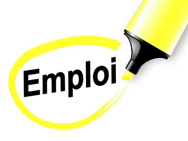 Leral/Job: Un jeune infographiste cherche emploi