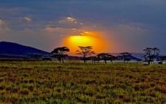 Le Kenya investit un milliard de CFA pour promouvoir son image de marque sur internet