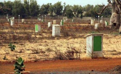 Analyse de la gouvernance foncière au Sénégal: Les acteurs optent pour la modernisation de la gestion foncière