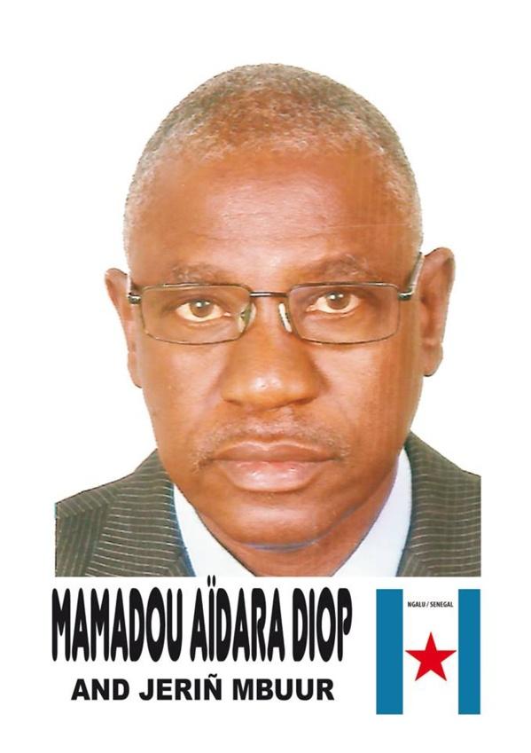 """Kaddu Diaspora"" reçoit Mamadou Aïdara Diop et Gorgui Diop"