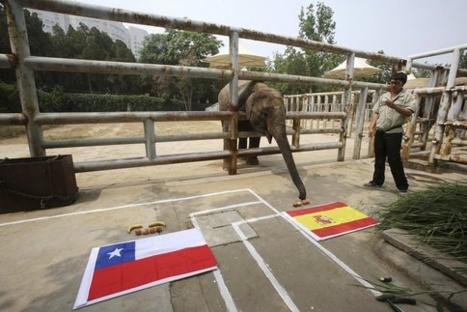 Espagne-Chili, l'avant-match