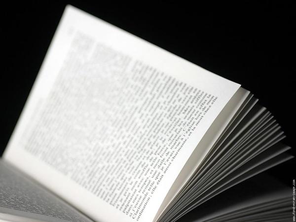 « Les Sanguinaires », le nouveau livre de Me Alassane Cissé