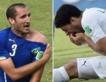 """Chiellini : """"La suspension de Suarez est trop excessive"""""""