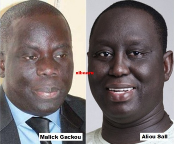 Guédiawaye : Aliou Sall élu maire, la bulle Gackou se dégonfle