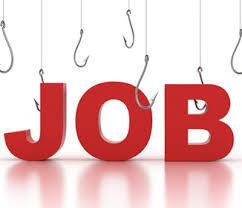Leral/Job :  Un chauffeur cherche emploi