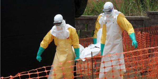 """Ebola : le """"patient zéro"""" a été identifié"""