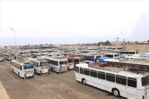 Gare routière des Baux maraichers de Pikine: Ébola hante le sommeil des usagers