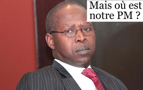Babacar Dione : «Mahammed Dionne et Cheikh Hadjibou Soumaré ont le même style»
