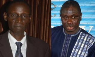 Incitation à l'insurrection et élections anticipées : La Raddho et Amnesty Sénégal minimisent