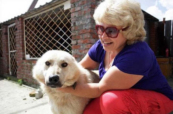 Ce que ce chien a fait par instinct pour protéger la maison de ses maîtres est inimaginable ! Vraiment touchant...
