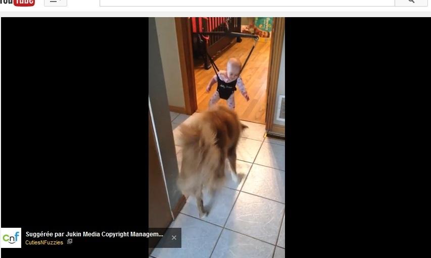 Ce bébé n'arrivait pas à sauter, du coup, un chien a décidé de lui montrer comment faire !