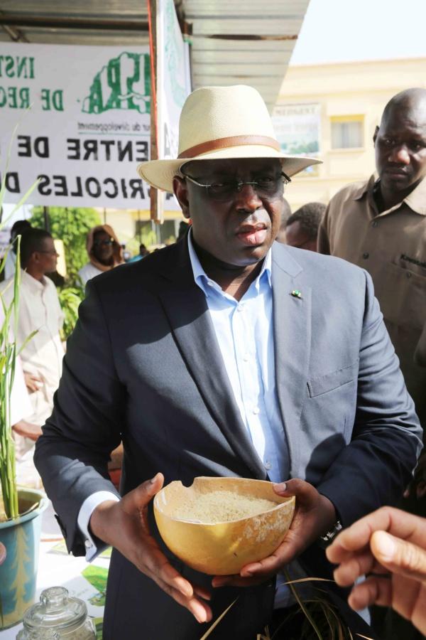 Conseil des ministres: Macky Sall impose aux structures étatiques le riz local