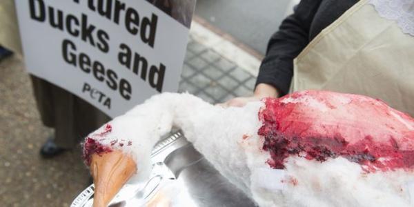 Etats-Unis : la bataille du foie gras est-elle la bonne ?