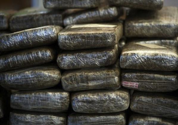 Plus de deux tonnes de chanvre indien saisies à Zac Mbao: Trois personnes arrêtées