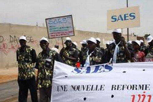 """Ucad : Le Saes dit """"non à cette mouture de la loi cadre falsifiée"""""""