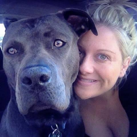 Ils lui ont menti à propos du pit bull qu'elle venait juste d'adopter, et voilà ce qui est arrivé !