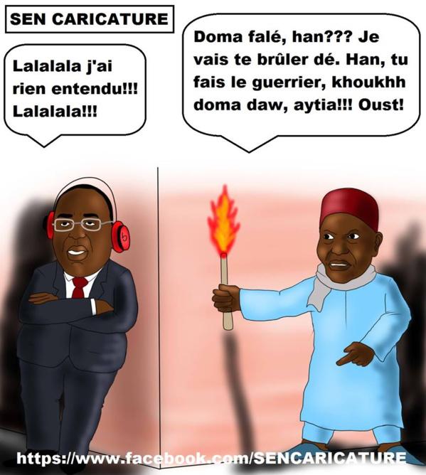 Que deviendrait le Sénégal si Me Wade était réélu en 2012 ? - Par Mandiaye Gaye
