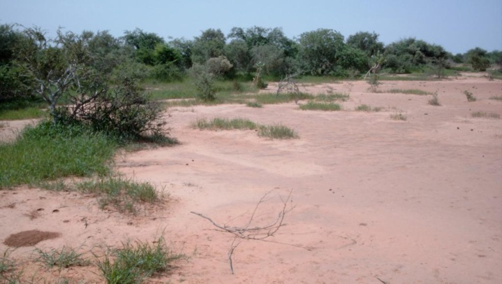 Enlèvement d'un Occidental au Burkina Faso: la traque s'organise