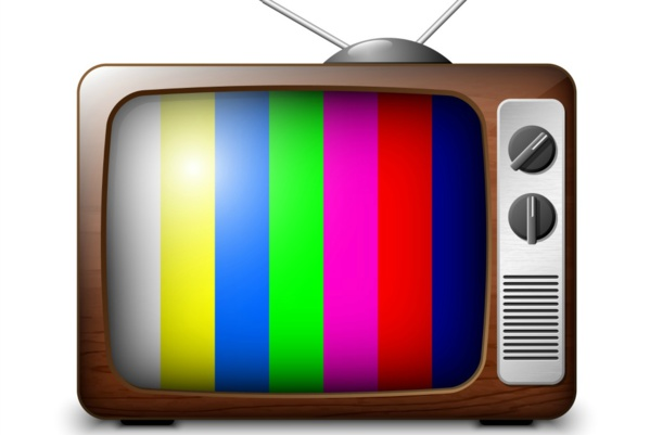 Le crépuscule du citoyen et le triomphe de la télé-citoyenneté : Quand des idoles deviennent des bourreaux