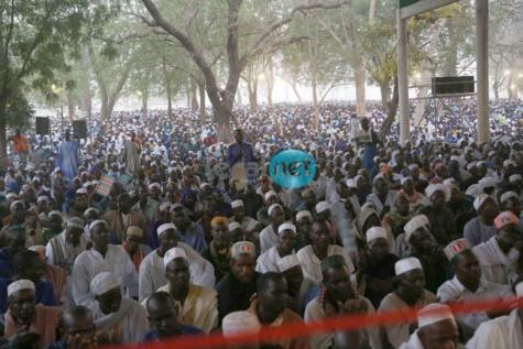 La foule de pélerins au Hadrat Diouma