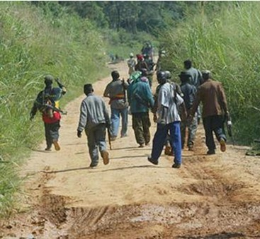 Kolda : Les femmes marchent pour le retour de la paix en Casamance, une bande armée répond par une attaque à Kaour