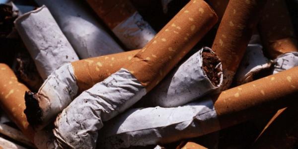 Rapport inquiétant d'Ascosen sur le tabagisme : « Le tabac occupe une place importante dans les écoles sénégalaises »