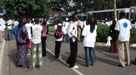 Réforme de l'enseignement supérieur : L'augmentation des droits d'inscription génère plus de 2 milliards de FCfa en deux ans