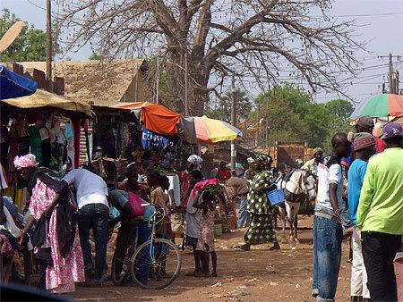 Vélingara : Un jeune tué à coups de pilon par son oncle à Pakour