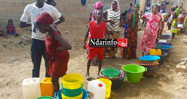 Misère à Pikine Diokoul : 3 mois sans eau, une marche de contestation en préparation