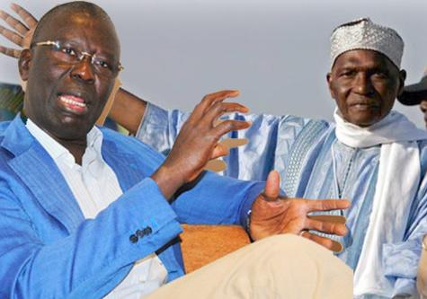 """Babacar Gaye, porte parole du Pds : """"C'est le retrait prématuré de Wade qui pourrait causer beaucoup de tort au parti"""""""