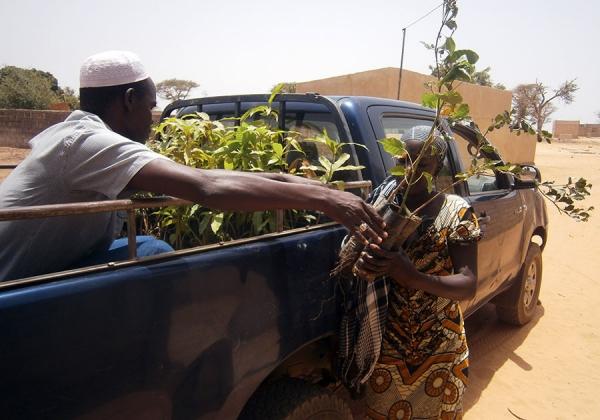 Renforcement du service des Eaux et forêts : L'Etat va recruter 400 agents