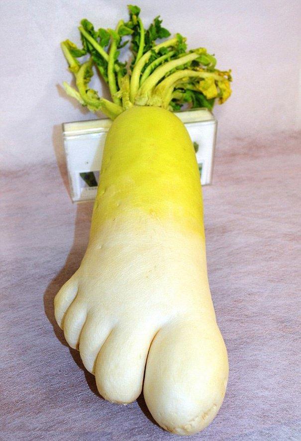 30 fruits et légumes aux formes improbables, quand la nature se lâche