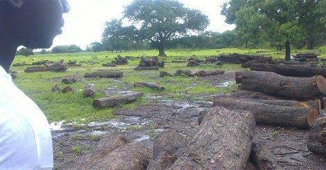 Libération des agents forestiers : Comment les ravisseurs ont reçu la rançon
