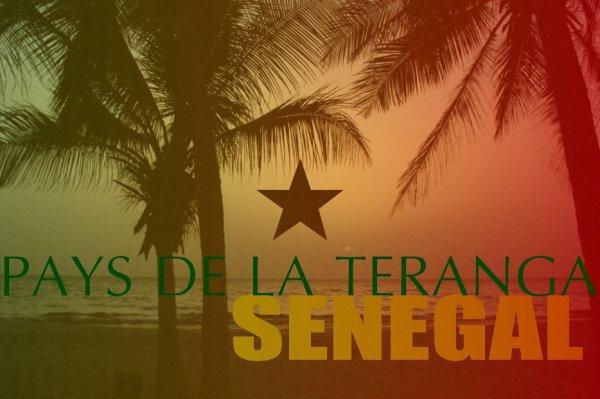 """""""Destinations dangereuses"""" pour ses ressortissants : Quand Israel dérape en citant """"l'Est du Sénégal"""""""