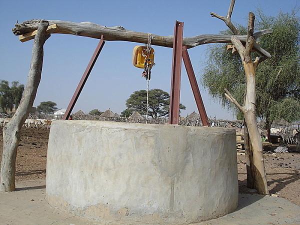 Pratiques mystiques ou sabotage : Des chiens jetés dans le puits du village de Ndoga Babacar