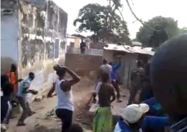 Vidéo incroyable, une hyène fait le buzz à Foundiougne