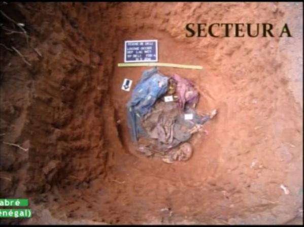 Ferme de Déli au Tchad : Des restes humains découverts dans des latrines, selon l'experte Claudia Bisso