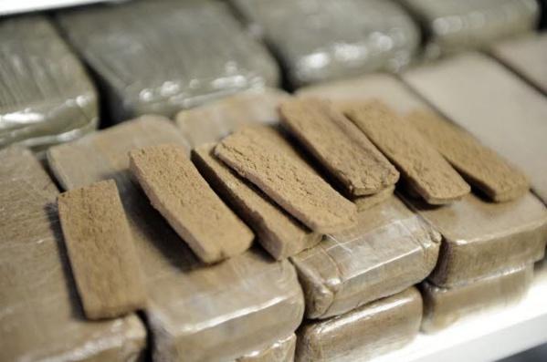 Trafic de chanvre indien : Deux dealers tombent avec 100 kilos