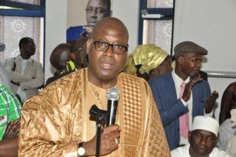 Amadou Talla Daff, ambassadeur itinérant : la consécration d'un tempérament