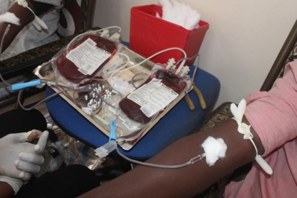Matinée don de sang au PCCI : Les organisateurs veulent collecter plus de 200 poches pour l'édition 2015